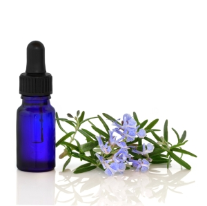 Rosemary Herb Flowers Phytotherapy