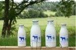 lait frais de jument