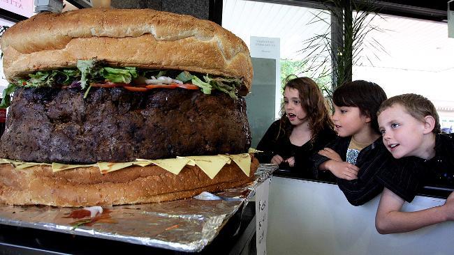 La maladie du hamburger : syndrome hémolytique et urémique