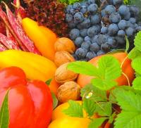 Devenir végétarien : attention aux troubles alimentaires