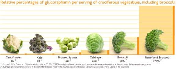 Glucoraphanine dans le brocoli