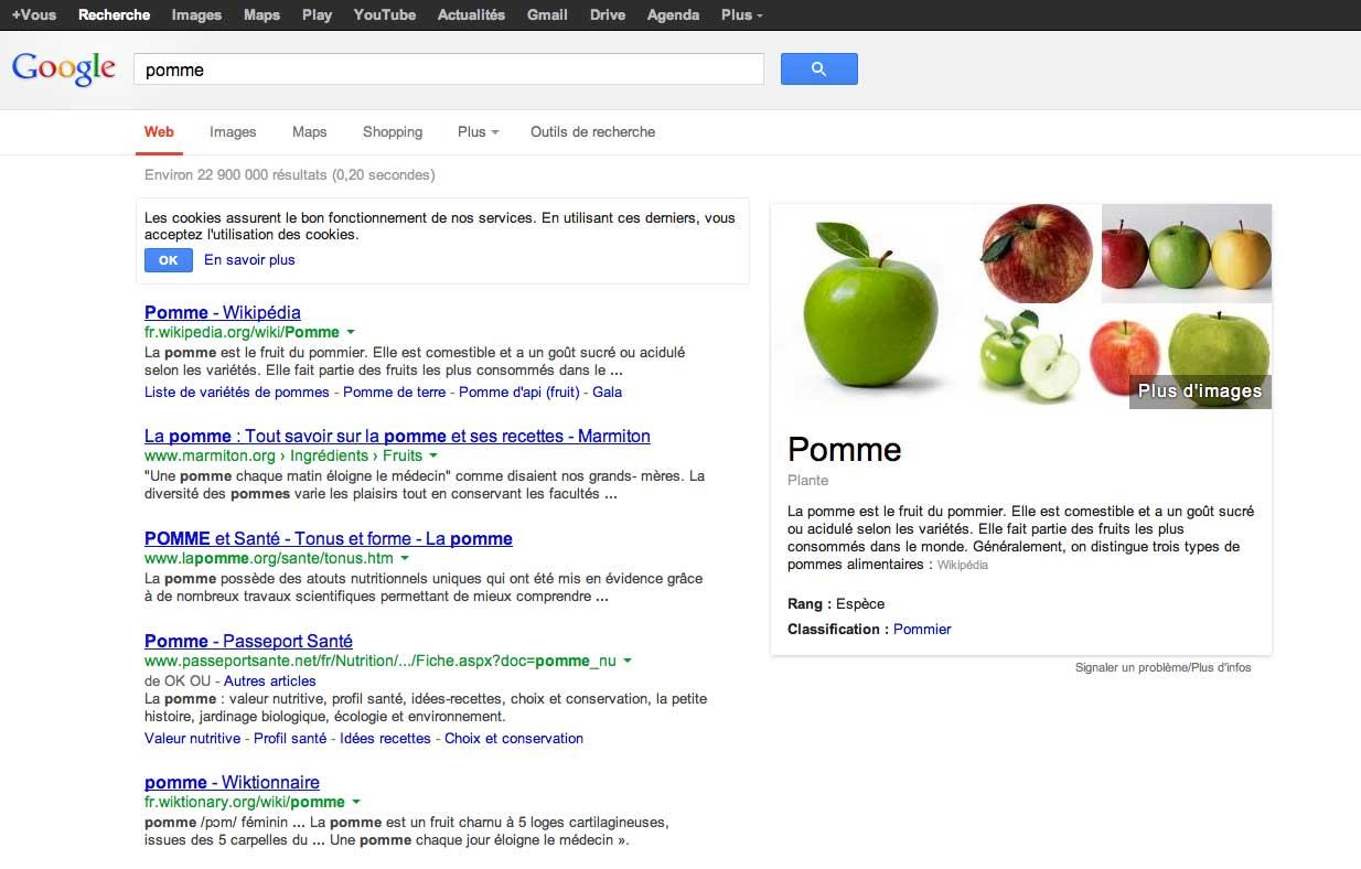 La pomme, un fruit délicieux