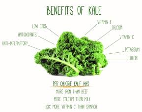 Les bienfaits du Kale