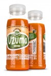 SHINE UZUMA GREEN JUICE