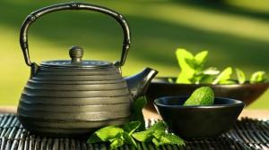 Thé vert en agricluture biologique