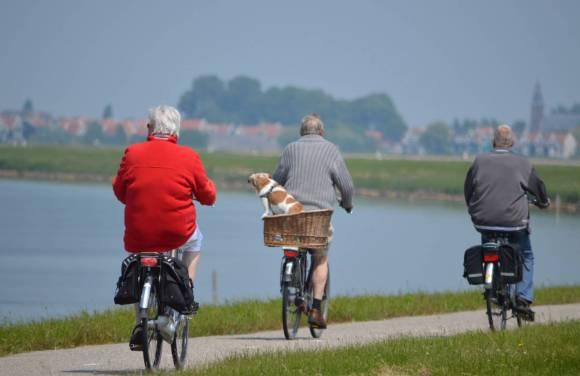 Exercice physique : prévention du déclin cognitif
