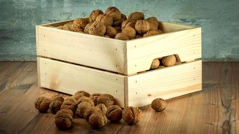 Le pouvoir des fruits secs : la noix