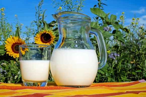 Qualités nutritionnelles des laits végétaux