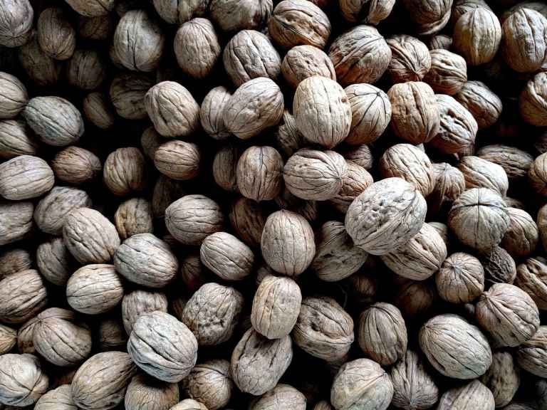 """Les fruits à coque ne sont pas une nourriture """"obésogène"""""""