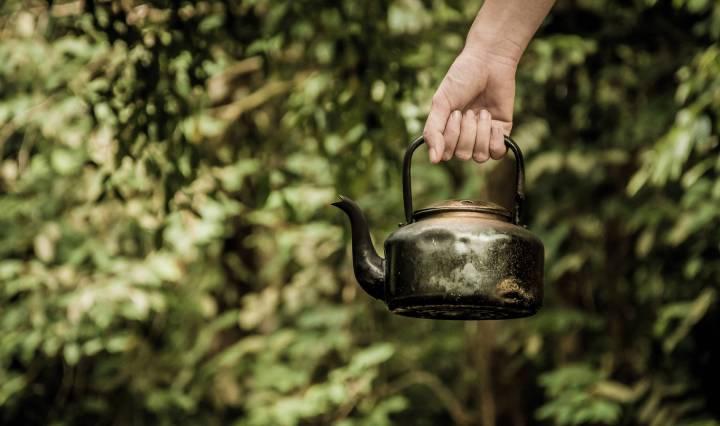 Nouvelle preuve du pouvoir du composé du thé vert appelé EGCG contre Alzheimer