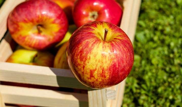 Comment se débarrasser des résidus de pesticides sur les pommes ?
