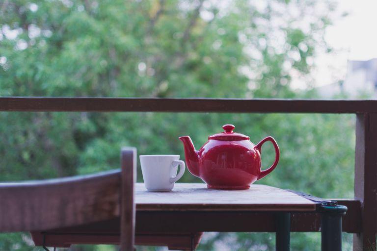 Les bienfaits du composé du thé vert appelé EGCG contre Alzheimer