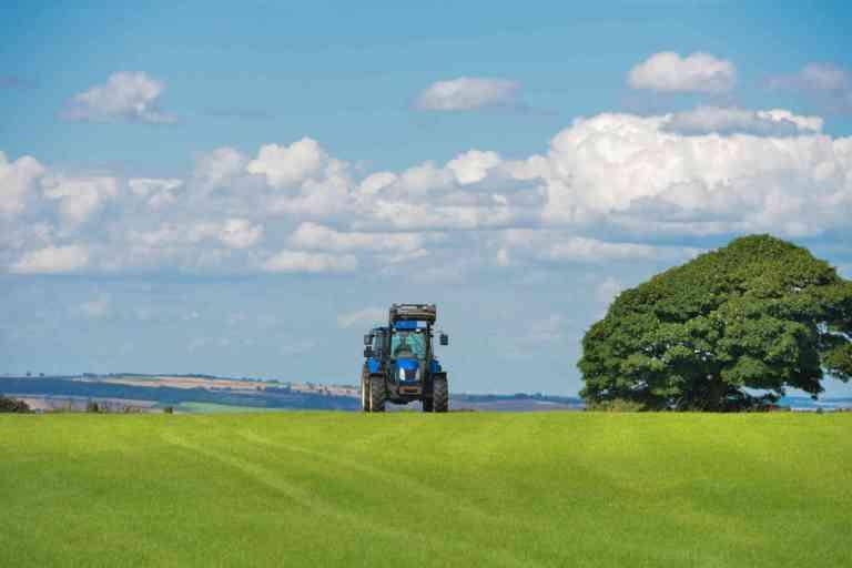 L'étude de la performance financière de l'agriculture biologique