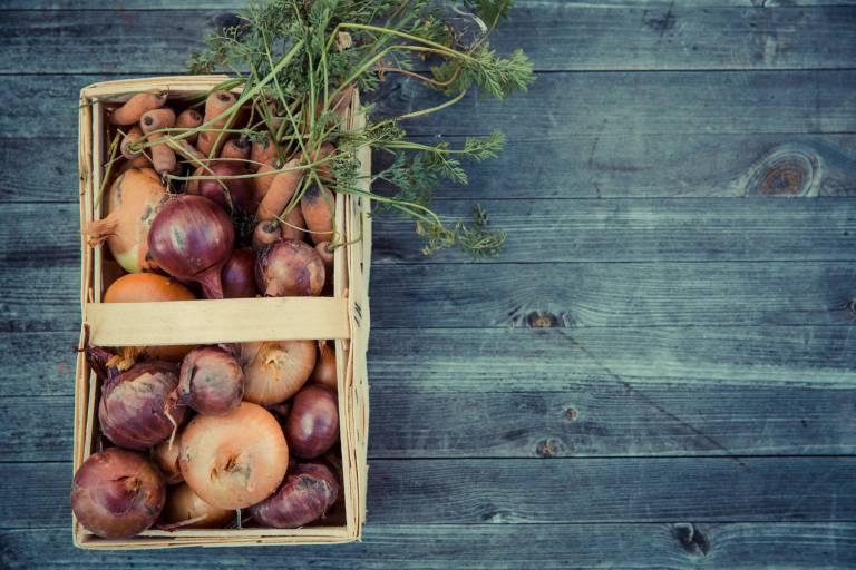 l'avenir de l'agriculture biologique