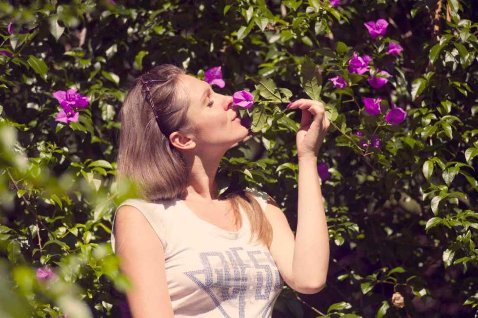Le système olfactif dans le processus d'oubli et de mémorisation