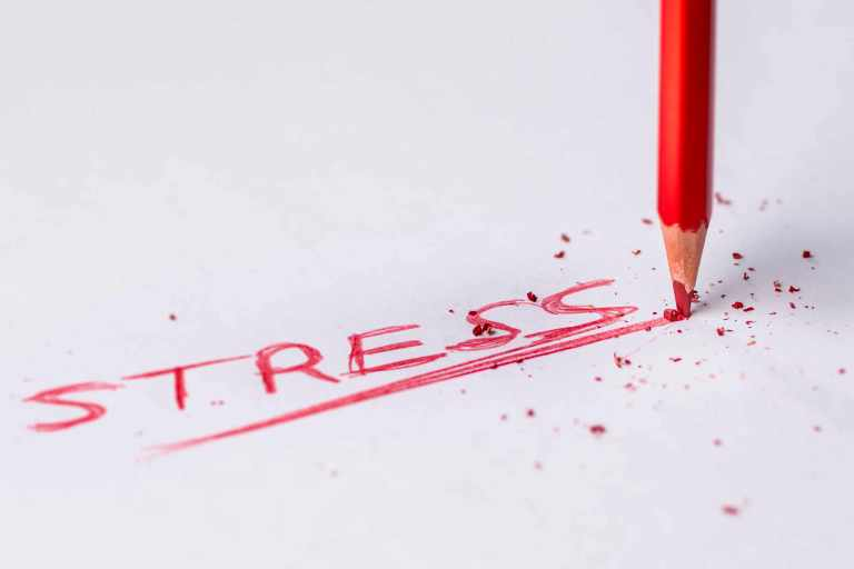The positive and negative points of stress &quot;width =&quot; 768 &quot;height =&quot; 512 &quot;/>  </p> <p><strong> A <a href=