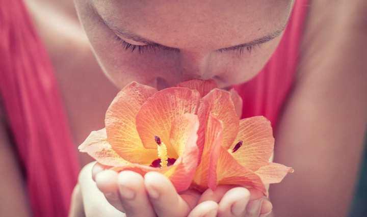 Comment notre cerveau stocke les odeurs et les transforme en souvenirs