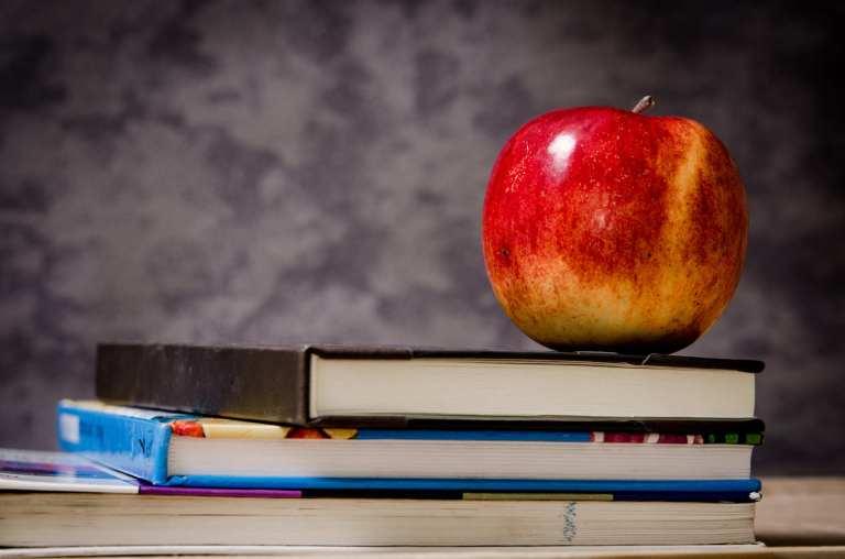 L'importance de manger local dans une cantine scolaire