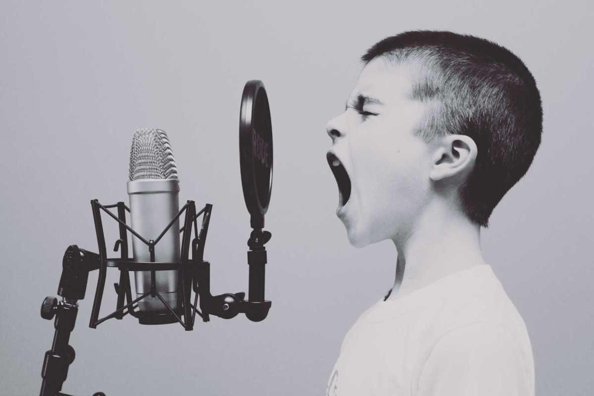 La voix est la meilleure façon de reconnaître les émotions chez les autres