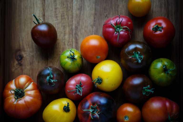 Bienfaits des tomates contre les dommages pulmonaires