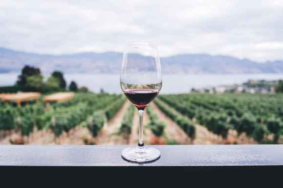 250 mL de vin rouge par jour