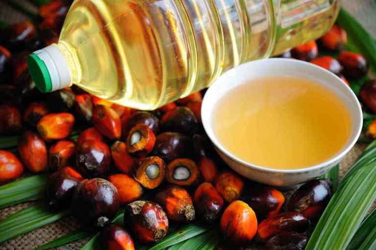 L'huile de palme : le démon de l'industrie alimentaire