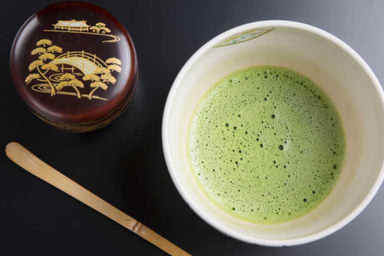 Métabolisme et amplification des effets du thé vert