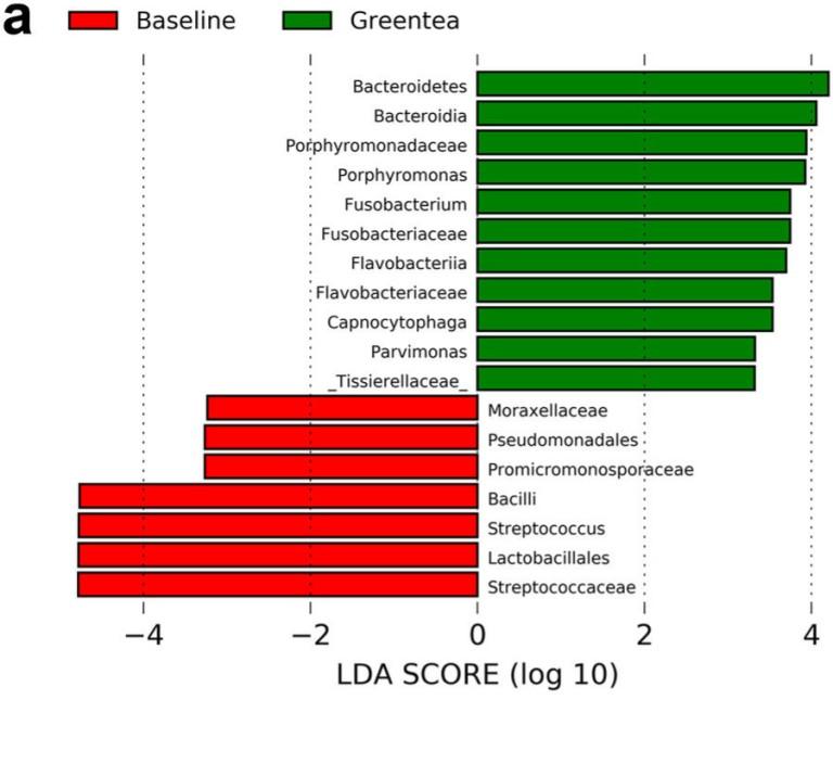 Thé vert, Streptococcus et Staphylococcus
