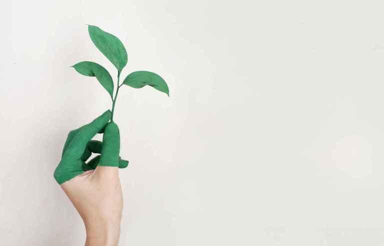 Les bienfaits du thé vert pour modifier les bactéries buccales