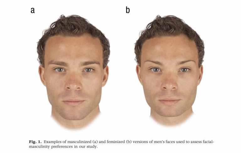 Etude sur l'attractivité masculine à l'égard des femmes
