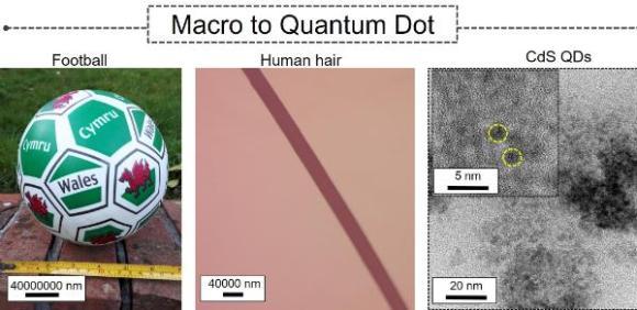 Comparaison Points Quantiques taille