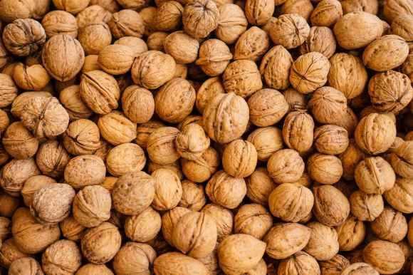 Les vertus des noix sont confirmées par de nouveaux résultats