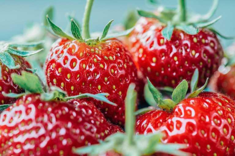 Les fraises peuvent aider à réduire l'inflammation nocive dans le côlon