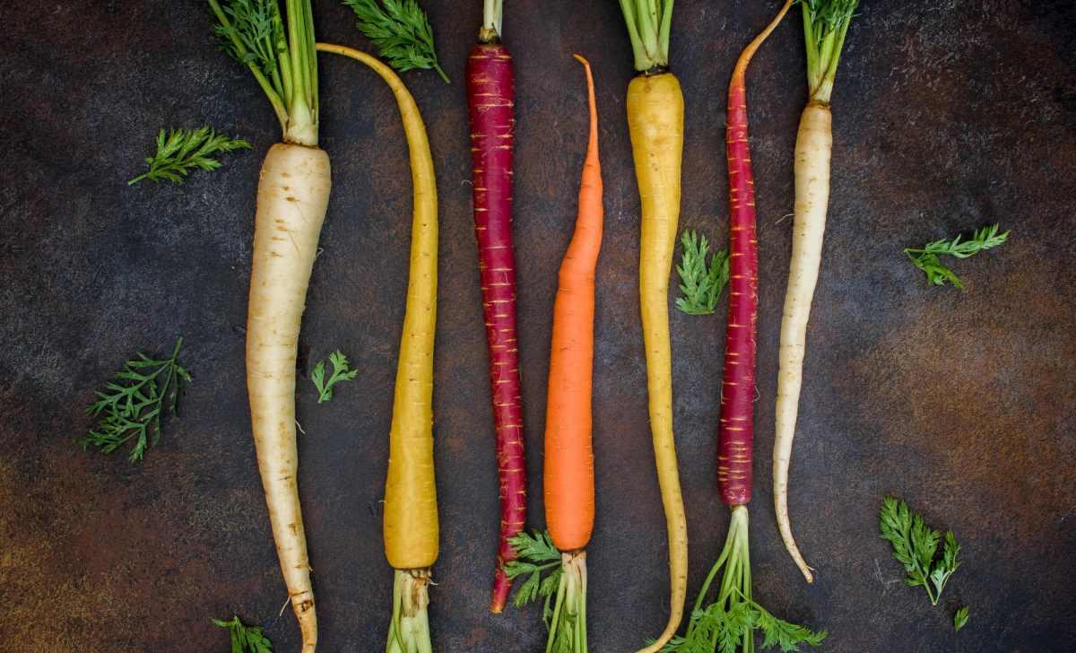 L'excès de vitamine A peut augmenter le risque de fractures