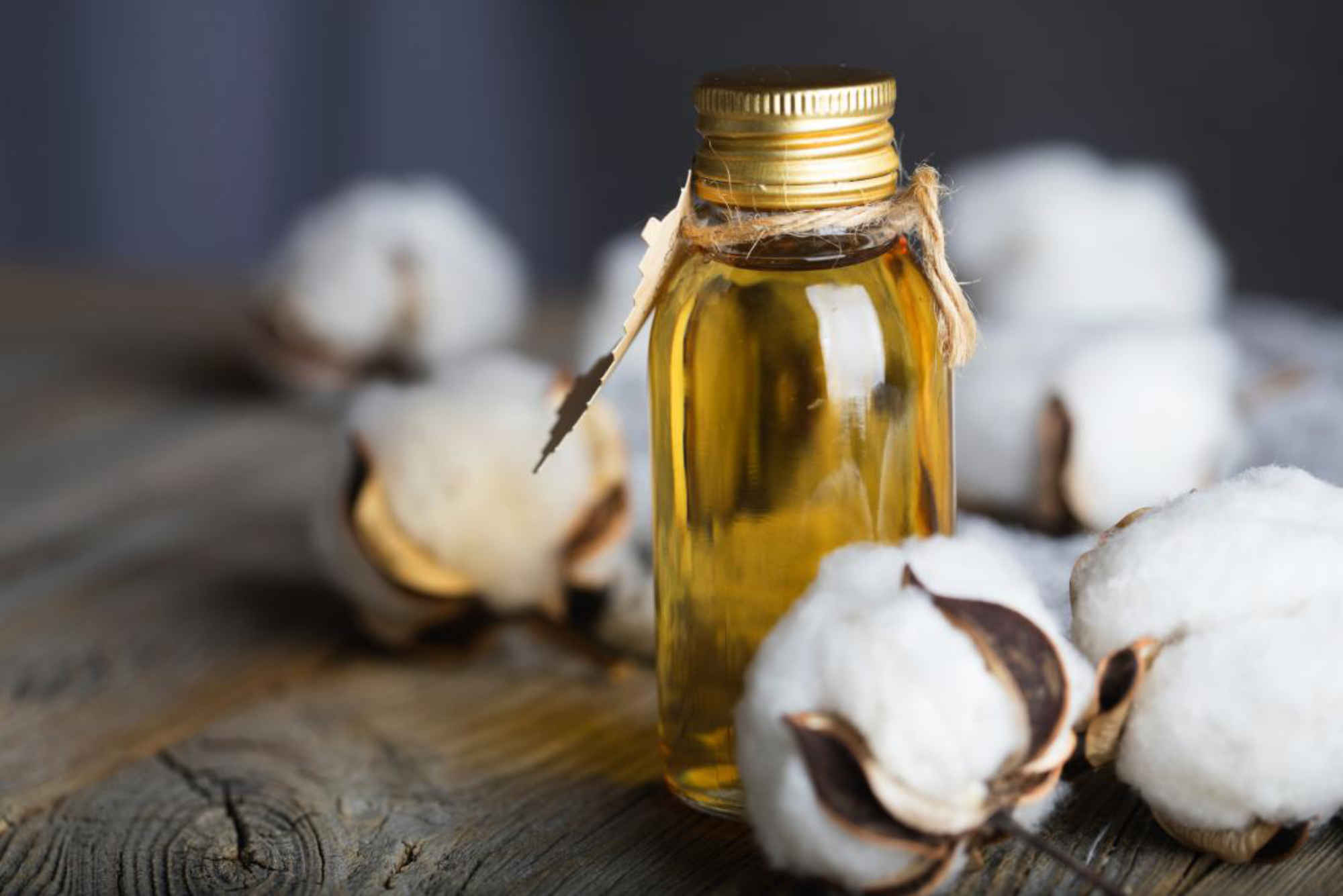 L'huile de coton permet de mieux maîtriser le taux de cholestérol