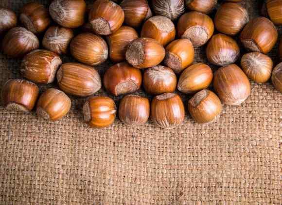 Variété de noisettes provenant de l'Oregon