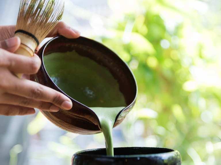 Les composés bioactifs du thé vert améliorent la santé