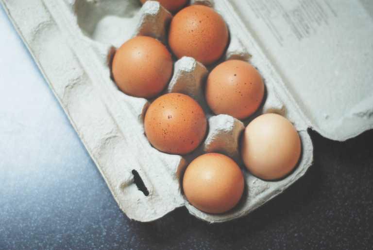 Mieux comprendre les mécanismes sous-jacents aux effets physiologiques de la consommation d'œufs
