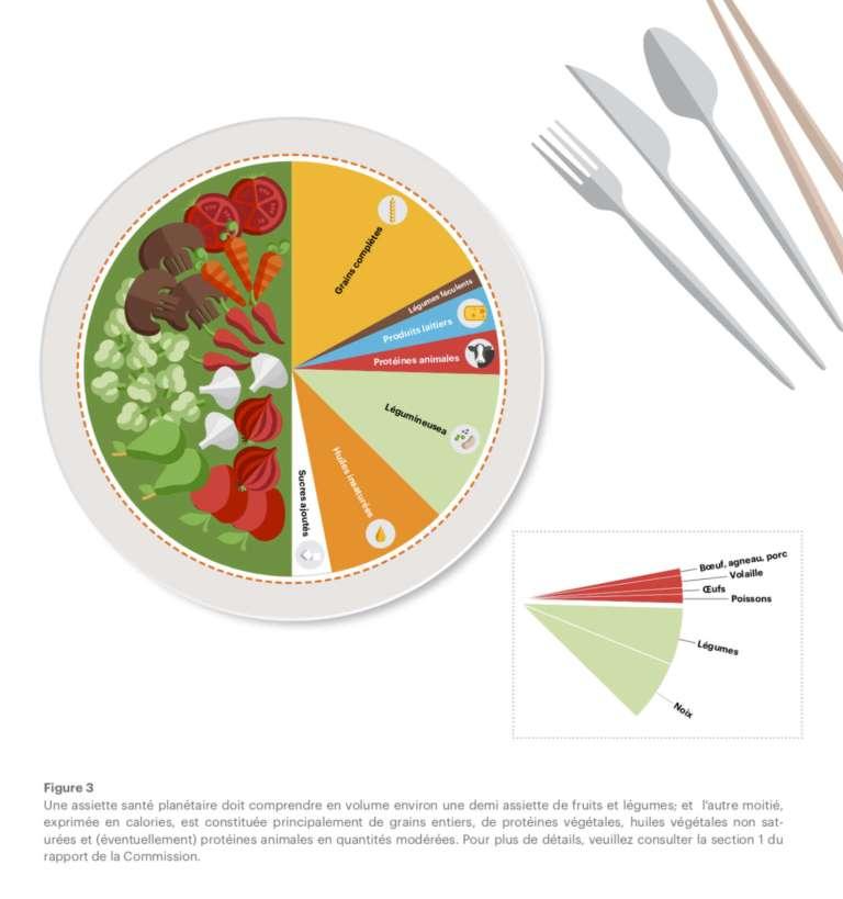 Objectifs scientifiques pour un régime alimentaire sain : le régime alimentaire planétaire
