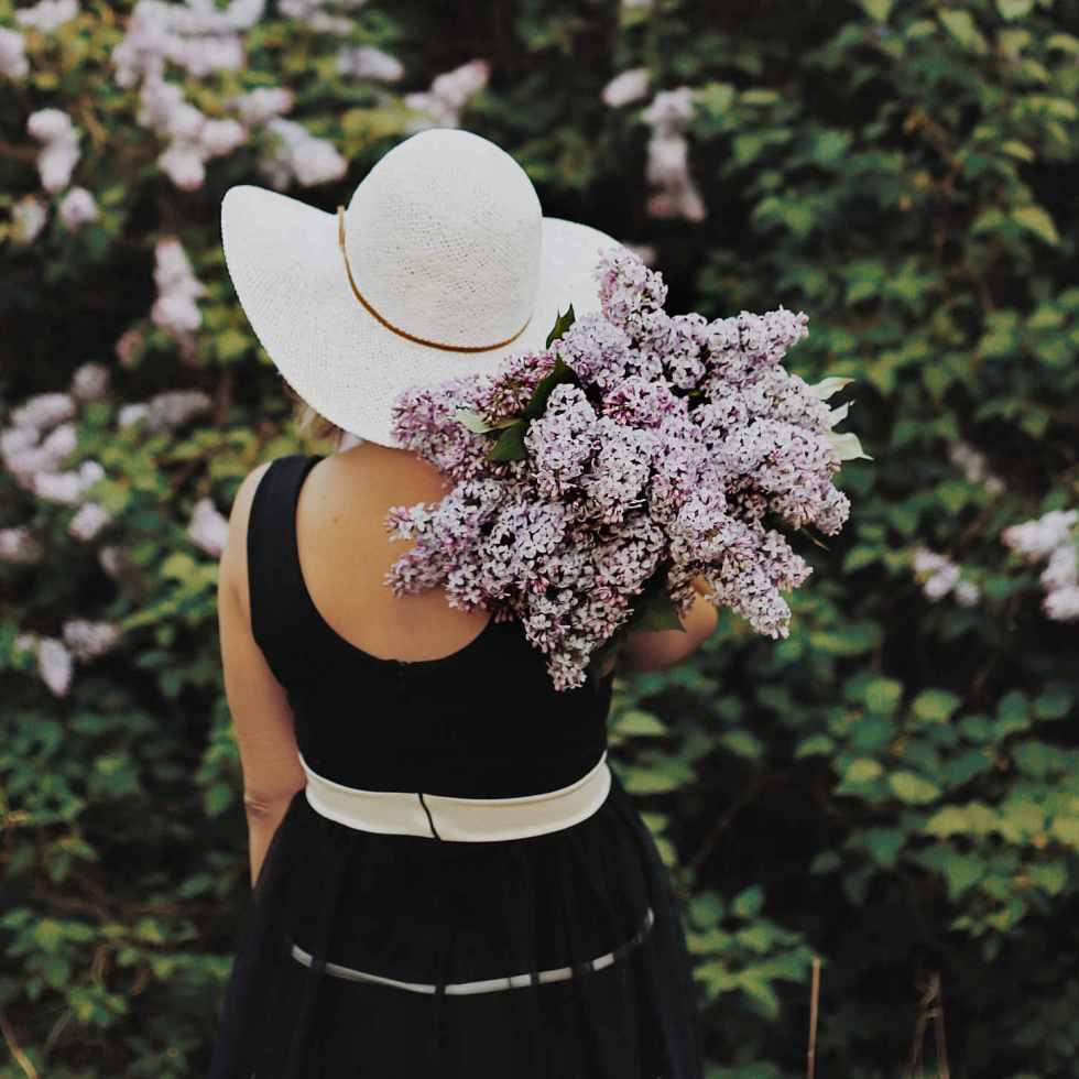 7 plantes pour aider le corps à s'adapter au stress et à l'anxiété