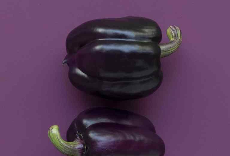 Les légumes sont simples à cuisiner