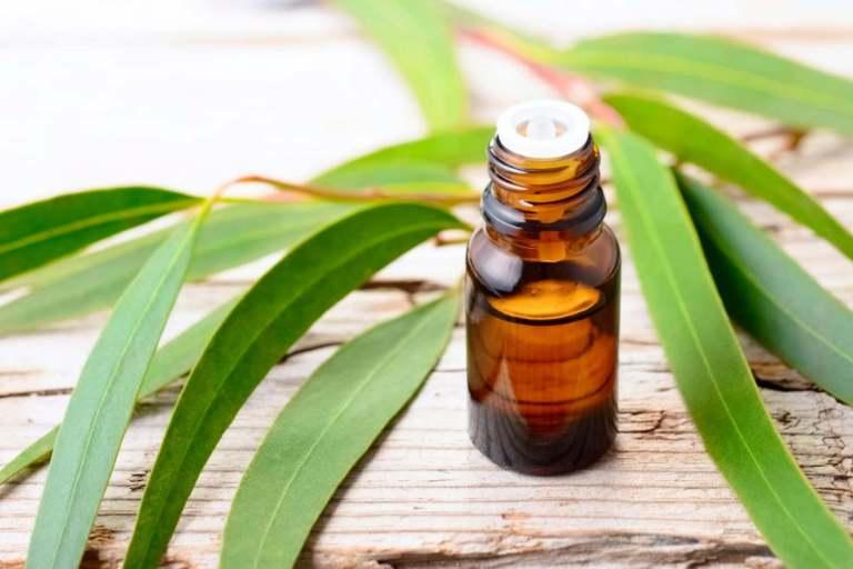 Bienfaits des huiles essentielles bio