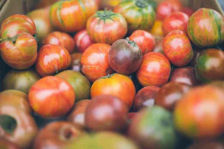 Les tomates et les antioxydants
