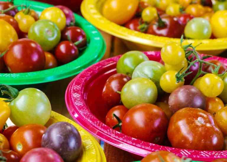 Tomates de toutes les couleurs