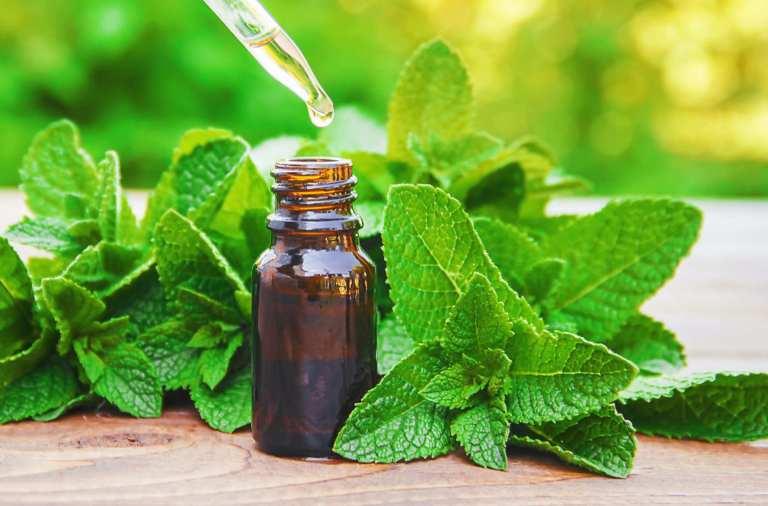 L'huile essentielle de menthe poivrée alliée contre les troubles de la déglutition