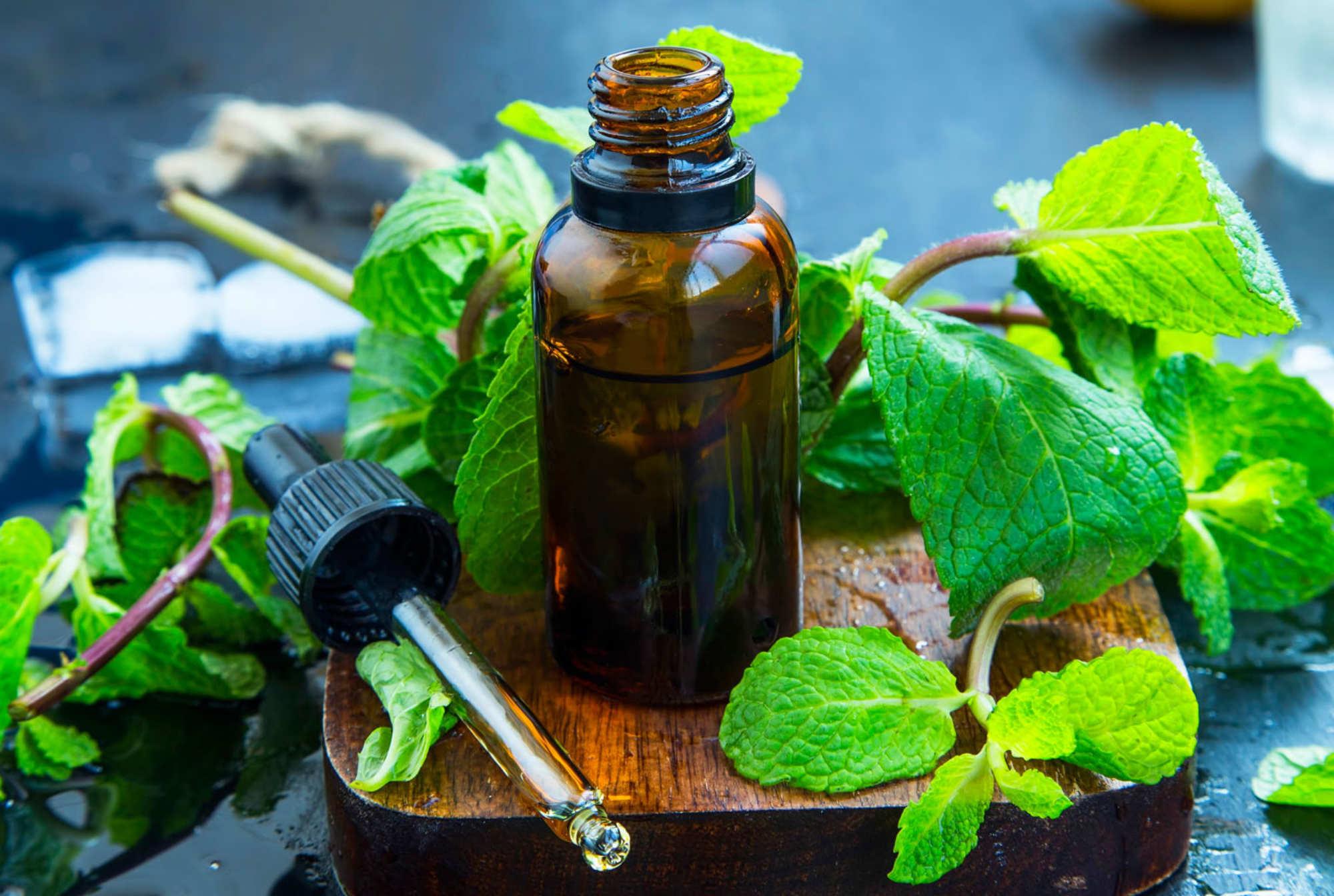 Les bienfaits de l'huile essentielle de menthe poivrée contre les troubles de la déglutition