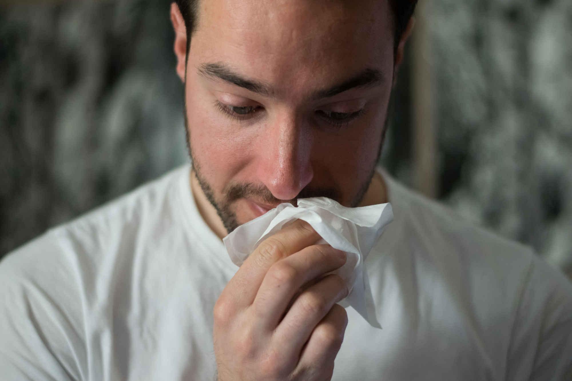 Les bienfaits des catéchines du thé contre le rhume des foins