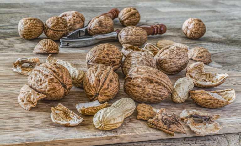 Les vertus des noix entières au quotidien pour la pression artérielle