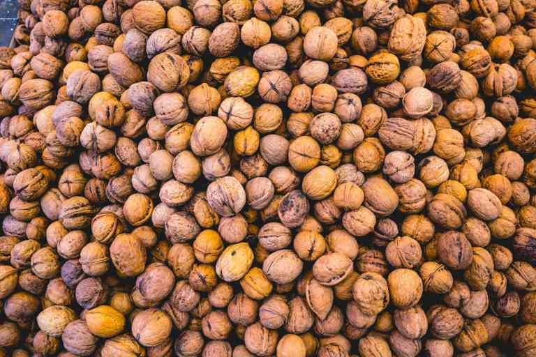 Les noix réduisent la pression centrale et le risque de maladie cardiovasculaire