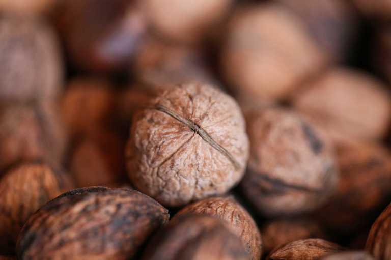 Manger des noix au quotidien